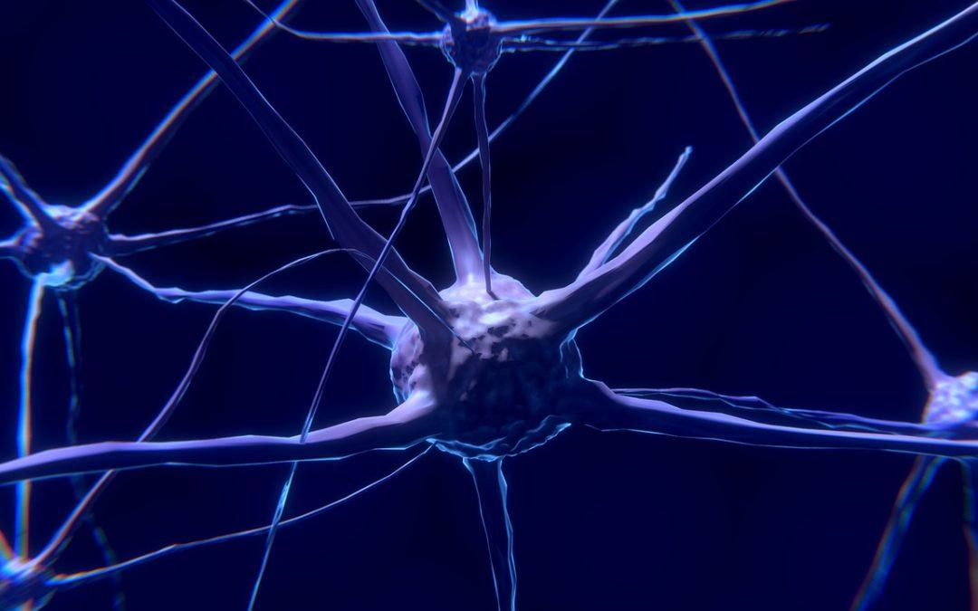 Týden mozku